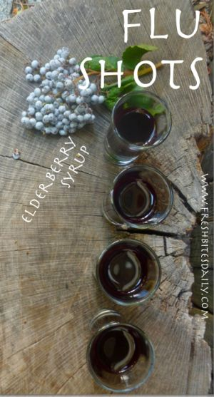 elderberry shots