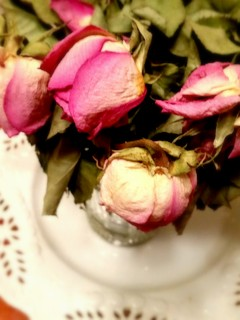 roses edited
