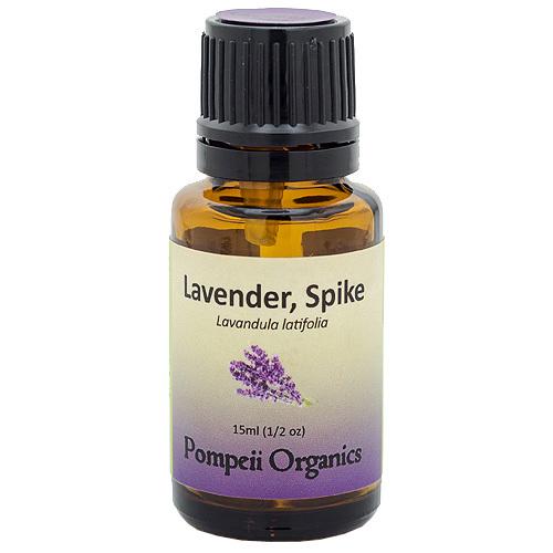 Spike Lavender
