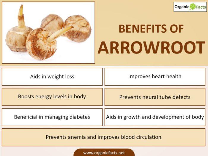 arrowrootinfo-700x525
